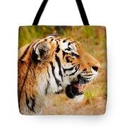 Siberian Tiger In Profile Tote Bag