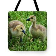 Siblings Tote Bag