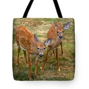 Siblings Visit Tote Bag