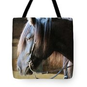 Side Light Tote Bag