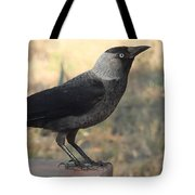 Side View Of A Wild Jackdaw Tote Bag