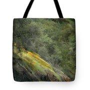 Sierra Poppies Tote Bag