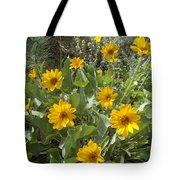 Sierra Wildflowers Tote Bag