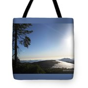 Beetle Rock Beetle Rock Beetle Rock Tote Bag