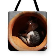 Siesta 1 Tote Bag by Xueling Zou