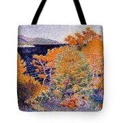 Siesta By The Water  Tote Bag