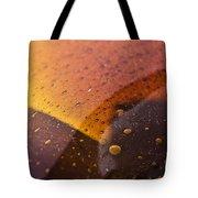 Signs-3 Tote Bag