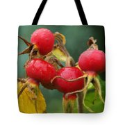Signs Of Fall 2 Tote Bag