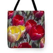 Signs Of Sping  Tote Bag