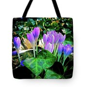 Signs Of Spring I Tote Bag