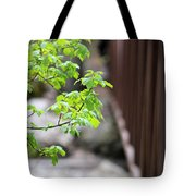 Signs Of Spring In American Fork Canyon Utah Tote Bag