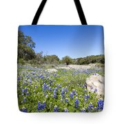 Signs Of Spring In Texas Tote Bag