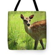 Sika Deer Omagh Tote Bag