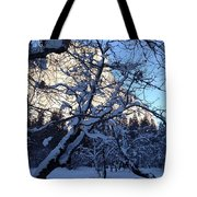 Silence In The Trees Yosemite Tote Bag