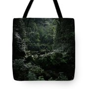 Silence Is Round Me   - Mokulehua Tote Bag