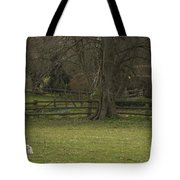 Silent Afternoon Tote Bag