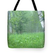 Silent Birch Tote Bag