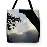 Silhouette Against The Sky Tote Bag