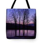 Silhouette At The Pond Tote Bag