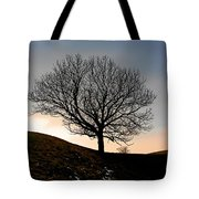 Silhouette Of A Tree On A Winter Day Tote Bag