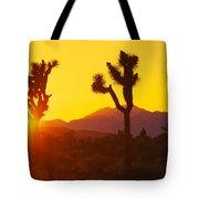 Silhouette Of Joshua Trees Yucca Tote Bag