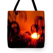 Silhouette Of Papyrus At Sunset Tote Bag