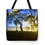 Silhouette Of Trees Tote Bag