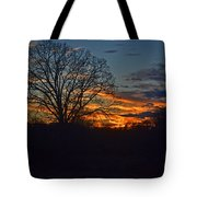 Silhouette Sunset 004 Tote Bag