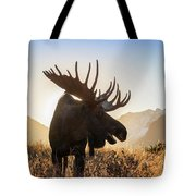 Silhouetted By The Sunrise Tote Bag