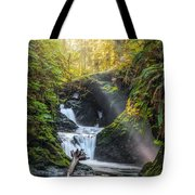 Silk Steps Tote Bag