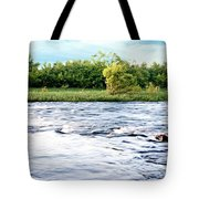 Silky Susquehanna River Tote Bag