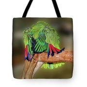 Silly Amazon Parrot Tote Bag