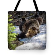 Silly Bear  Tote Bag