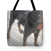 Silly Dog Tote Bag