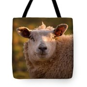 Silly Face Tote Bag by Angel  Tarantella