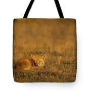 Silly Fox Tote Bag