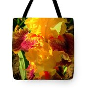 Silly Frilly Dragon Tote Bag