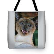 Silly Sadi Smiling Tote Bag
