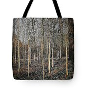 Silver Birch Winter Garden Tote Bag