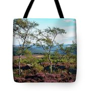 Silver Birch At Surprise View Tote Bag