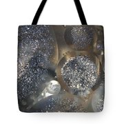 Silver Circles Tote Bag