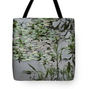 Silver Coins Tote Bag