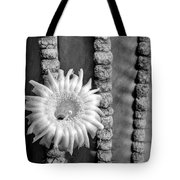 Silver Desert Jewel Tote Bag