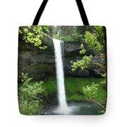 Silver Falls 1 Tote Bag