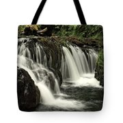 Silver Falls State Park Tote Bag
