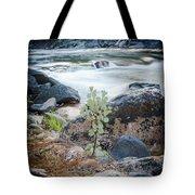 Silver Fork Manzanita Tote Bag