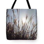 Silver Grass Tote Bag