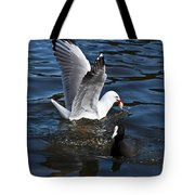 Silver Gull And Australian Coot Tote Bag
