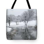 Silver Morn Tote Bag