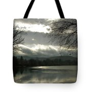 Silver River Tote Bag
